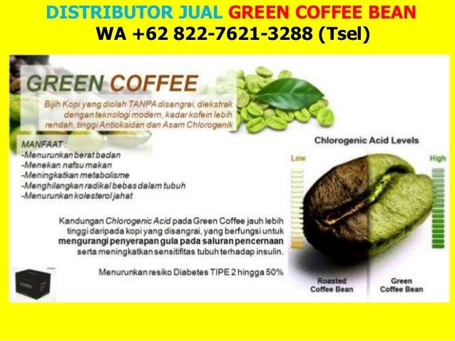 Pengertian, Manfaat dan Harga Green Coffee di Indonesia serta Efek Sampingnya
