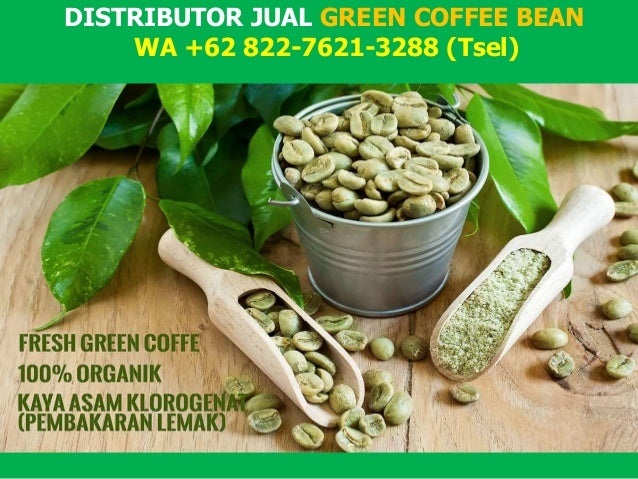 Get Our Indonesian Green Coffee Bean Directly from the Farmers