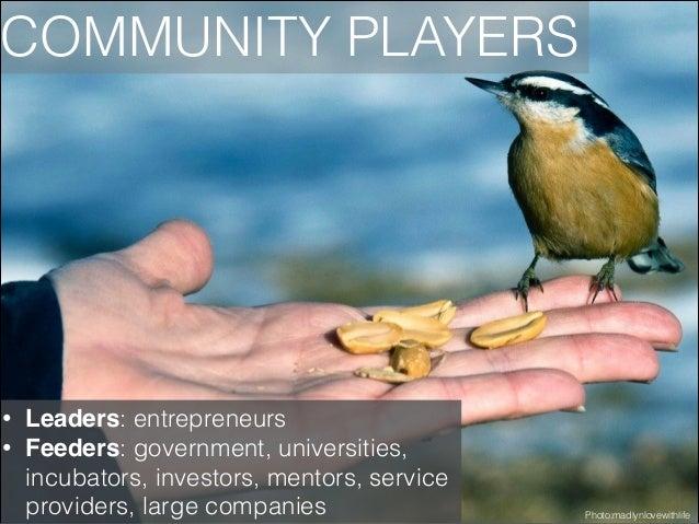 COMMUNITY PLAYERS  • •  Leaders: entrepreneurs Feeders: government, universities, incubators, investors, mentors, service ...