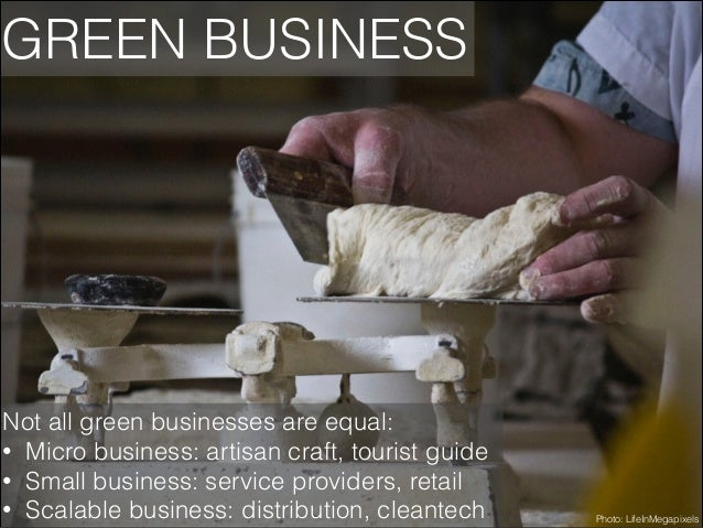 GREEN BUSINESS  Not all green businesses are equal: • Micro business: artisan craft, tourist guide • Small business: servi...