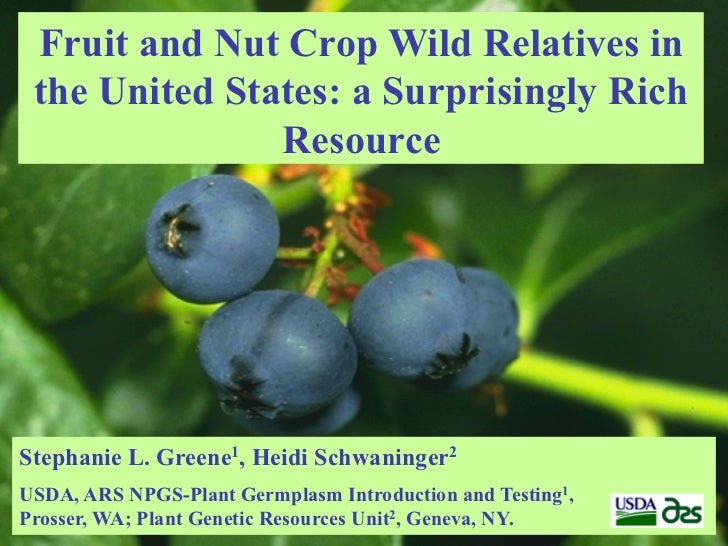 Fruit and Nut Crop Wild Relatives in the United States: a Surprisingly Rich               ResourceStephanie L. Greene1, He...