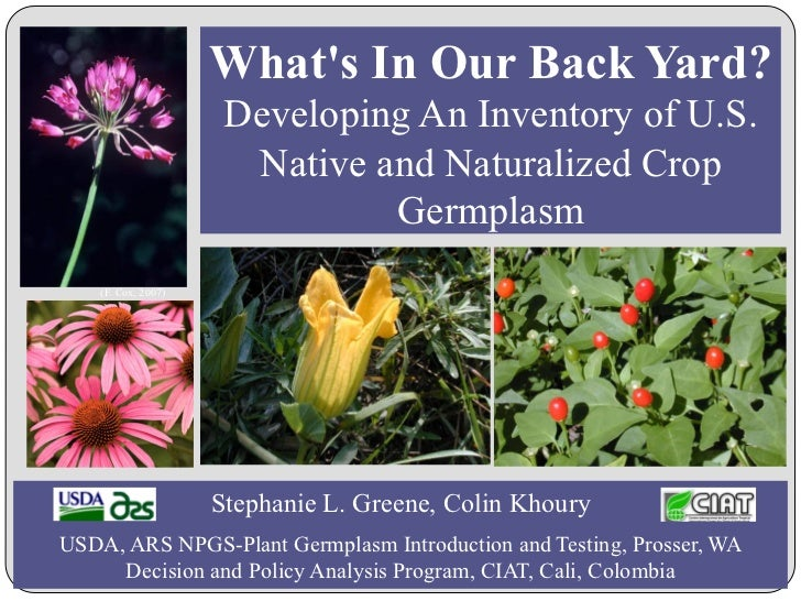 Whats In Our Back Yard?                      Developing An Inventory of U.S.                       Native and Naturalized ...