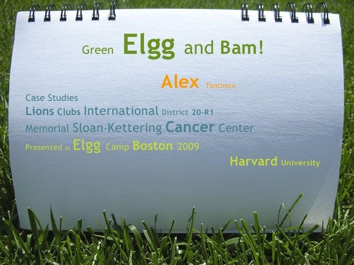 Green   Elgg      and Bam!                         Alex      Tanchoco Case Studies Lions ClubsInternationalDistri...