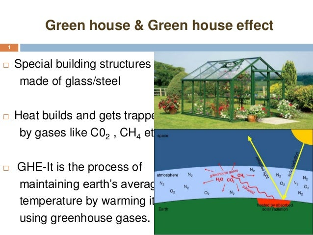 the green house effect chlorofluorocarbons and A simplified explanation of the greenhouse effect for kids greenhouse effect and global warming are terms that children must be listening everyday in the school, news, books, etc, but may not be knowing their actual meaning and their effects.