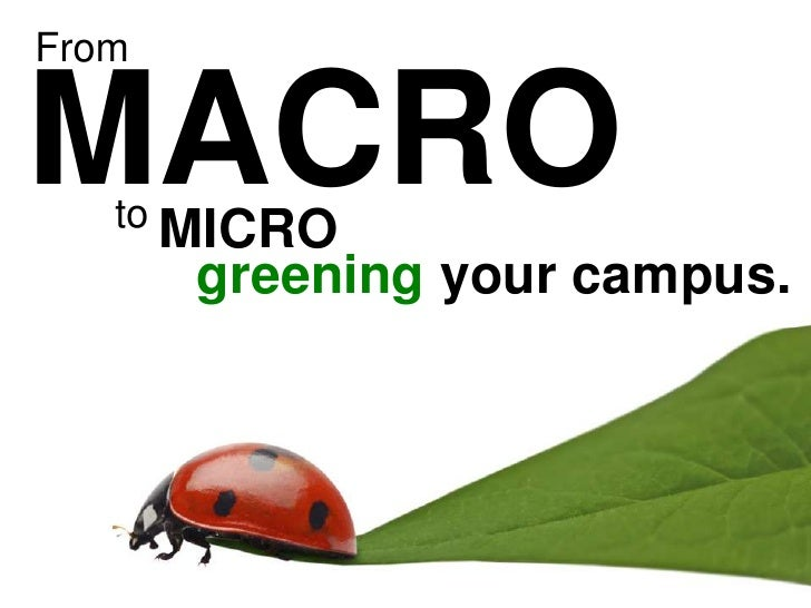 From<br />MACRO<br />to<br />MICRO<br />greening your campus.<br />