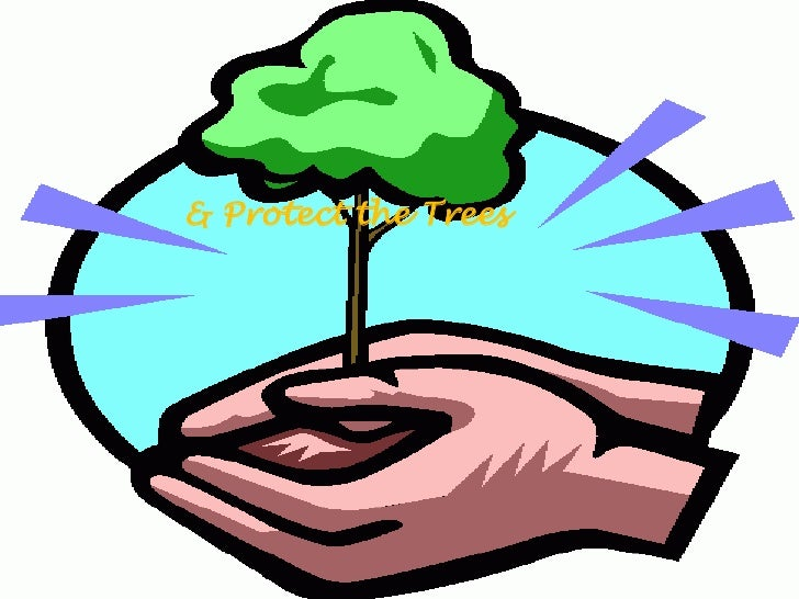 essay global warming english Essay writing guide  and warming increases by 5 to 9 degrees by the end of this century,  so they will think twice about ignoring global warming,.