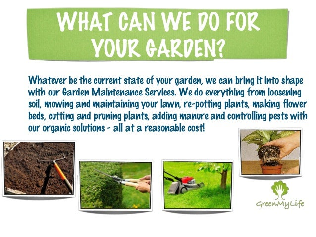 Green mylife garden maintenance services for Gardening services