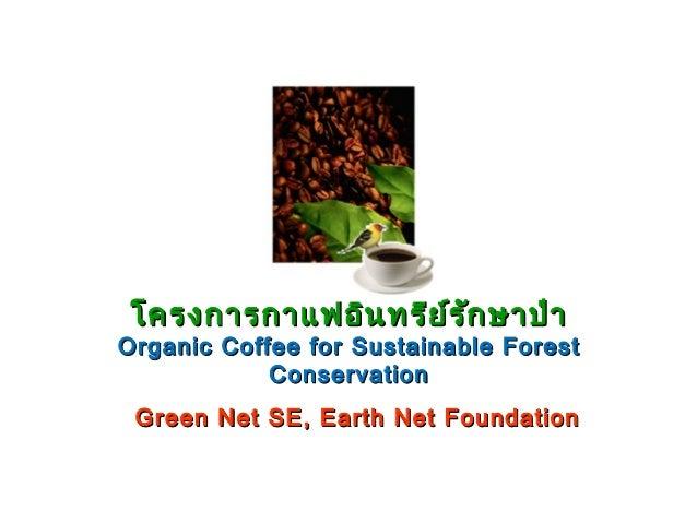 โครงการกาแฟอิน ทรีย ์ร ัก ษาป่า  Organic Coffee for Sustainable Forest Conservation Green Net SE, Earth Net Foundation