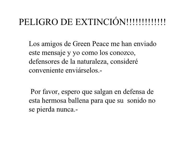 PELIGRO DE EXTINCIÓN!!!!!!!!!!!!!   Los amigos de Green Peace me han enviado este mensaje y yo como los conozco ,  defenso...