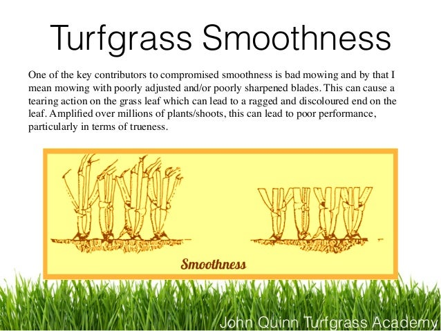 John Quinn Turfgrass Academy Turfgrass Smoothness One of the key contributors to compromised smoothness is bad mowing and ...