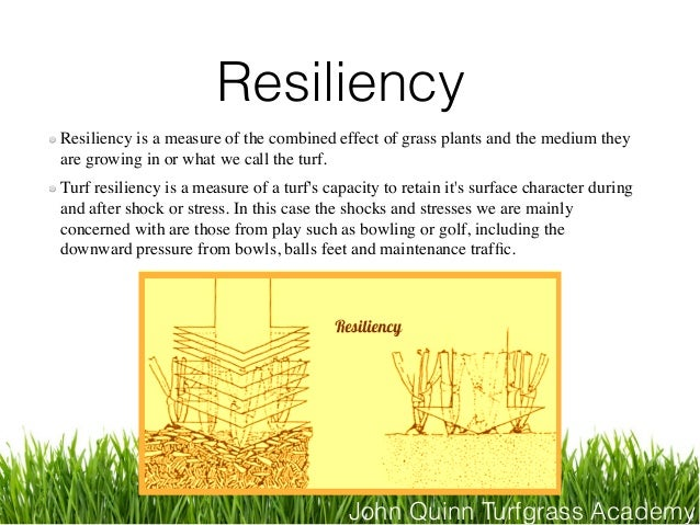 John Quinn Turfgrass Academy Resiliency Resiliency is a measure of the combined effect of grass plants and the medium they...