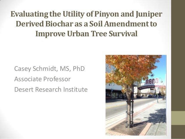 Evaluating the Utility of Pinyon and Juniper Derived Biochar as a Soil Amendment to Improve Urban Tree Survival  Casey Sch...