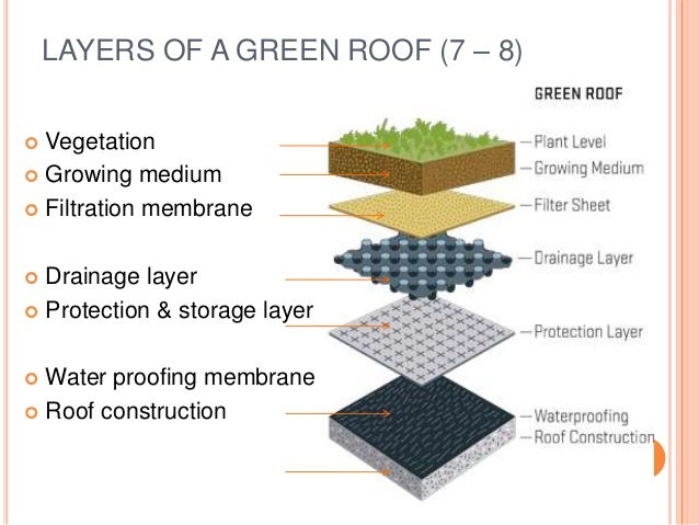 Green Roof Presentation