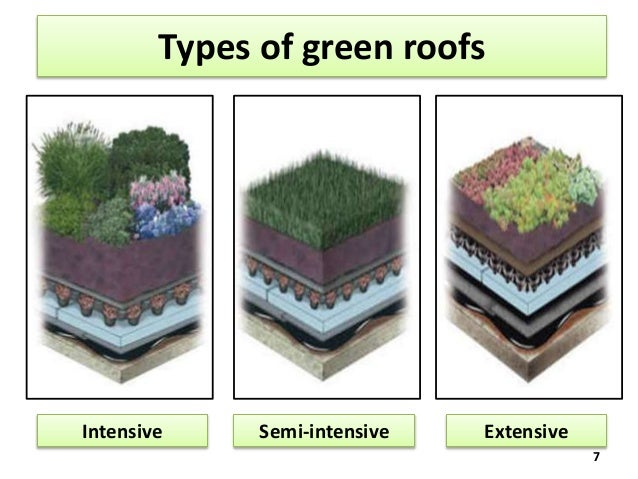 green roofs 7 638