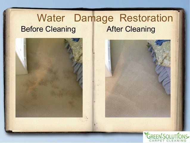 Carpet Rug Cleaning Service - 웹