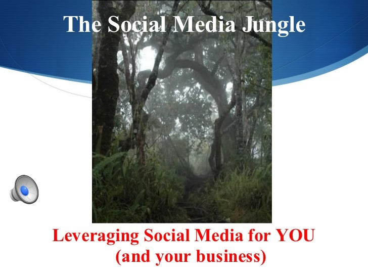 The Social Media Jungle <ul><li>Leveraging Social Media for YOU  (and your business)   </li></ul>
