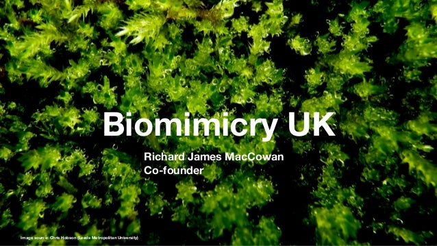 Biomimicry UK                                                             Richard James MacCowan                          ...