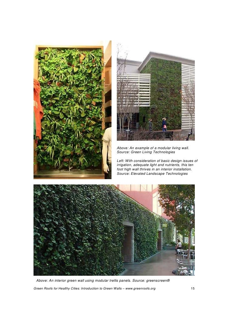 Green walls technology benefits and design for Green wall advantages