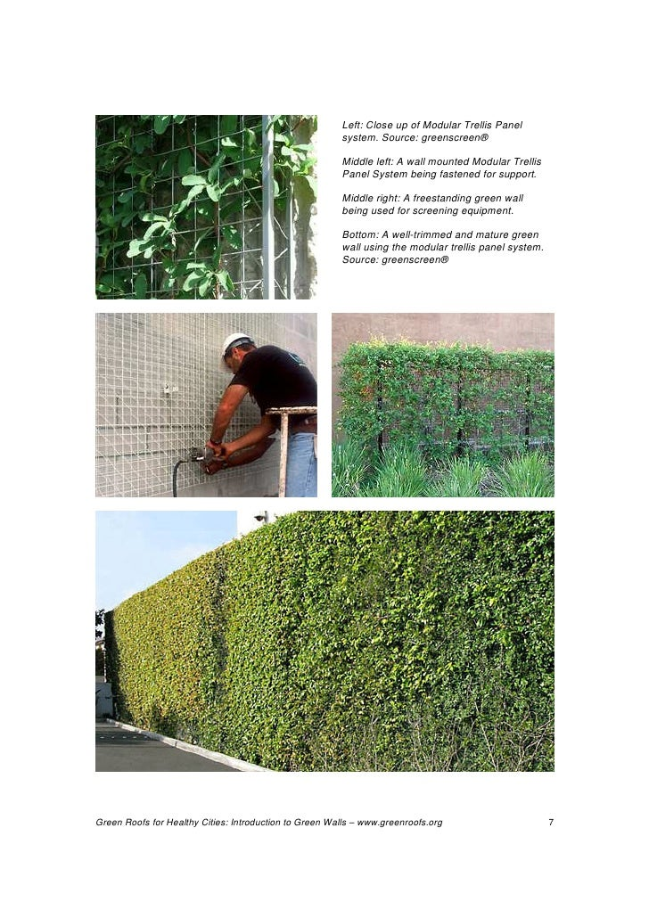 Green walls technology benefits and design for Green wall system