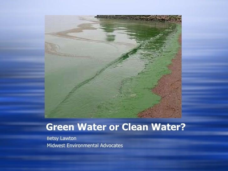 Green Water or Clean Water? <ul><li>B etsy Lawton </li></ul><ul><li>Midwest Environmental Advocates </li></ul>