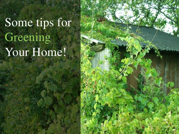 Some tips for GreeningYour Home!<br />