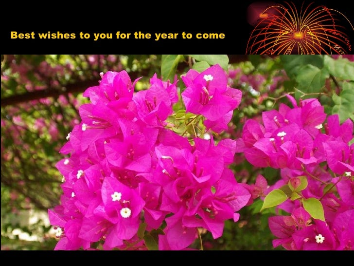 Best wishes to you for the year to come