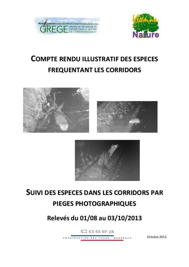 CCOOMMPPTTEE RREENNDDUU IILLLLUUSSTTRRAATTIIFF DDEESS EESSPPEECCEESS FFRREEQQUUEENNTTAANNTT LLEESS CCOORRRRIIDDOORRSS SSUU...