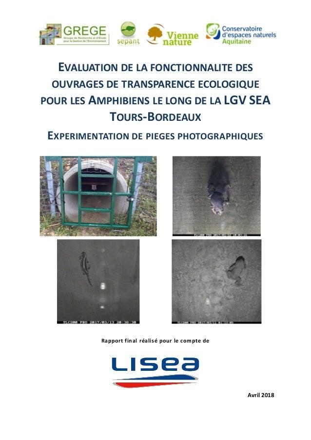 EVALUATION DE LA FONCTIONNALITE DES OUVRAGES DE TRANSPARENCE ECOLOGIQUE POUR LES AMPHIBIENS LE LONG DE LA LGV SEA TOURS-BO...