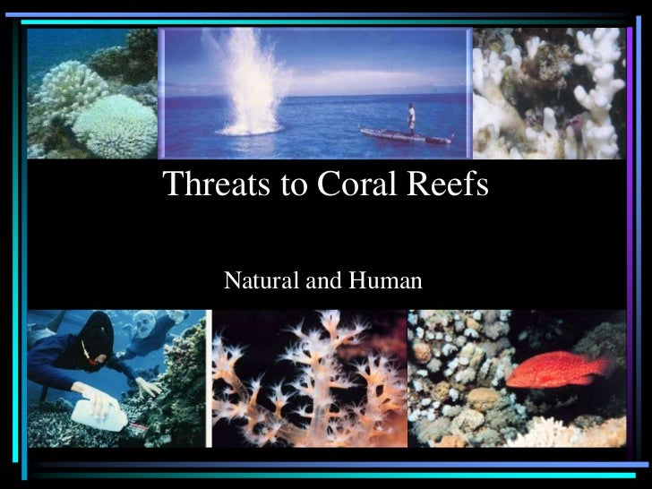 Threats to Coral Reefs    Natural and Human