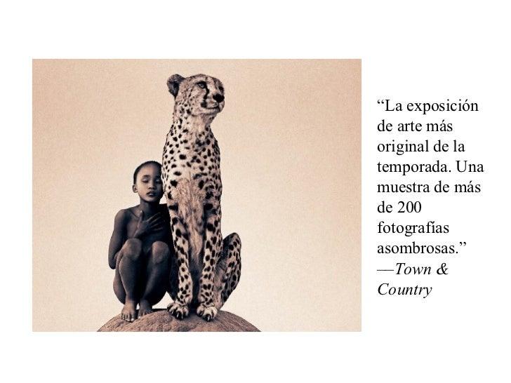 """"""" La exposición de arte más original de la temporada. Una muestra de más de 200 fotografías asombrosas."""" –– Town & Country"""