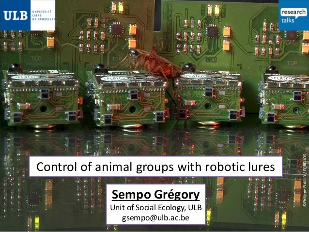 Sempo Grégory  Unit of Social Ecology, ULB gsempo@ulb.ac.be  ©Philippe PLAILLY / EURELIOS  Control of animal groups with r...