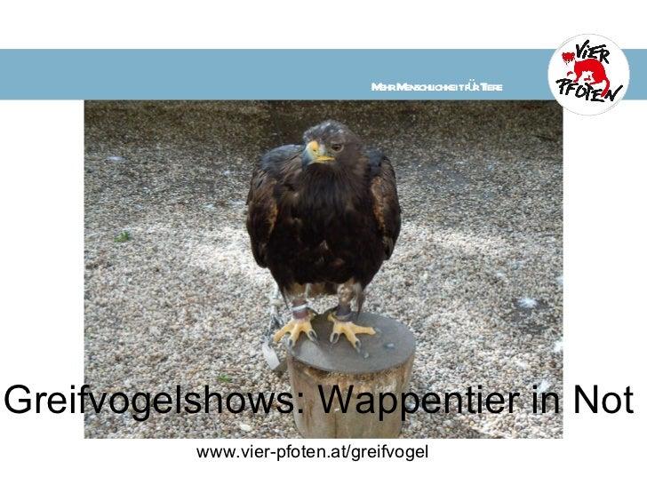 Greifvogelshows: Wappentier in Not www.vier-pfoten.at/greifvogel     Mehr Menschlichkeit für Tiere