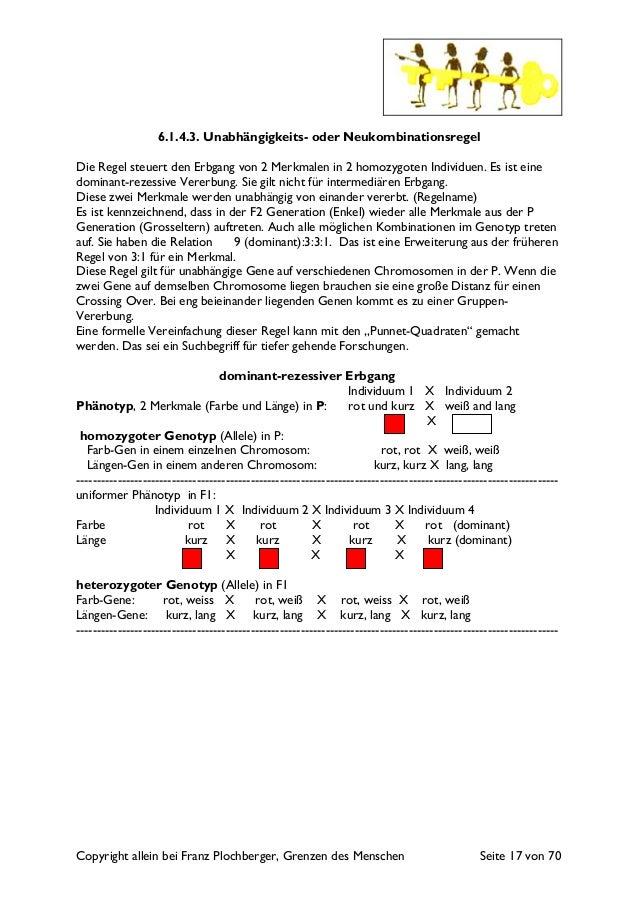 Copyright allein bei Franz Plochberger, Grenzen des Menschen Seite 17 von 70 6.1.4.3. Unabhängigkeits- oder Neukombination...