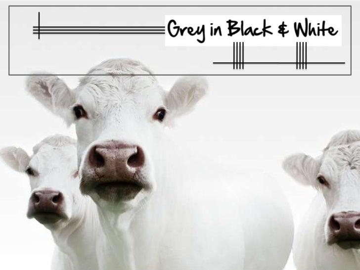 Grey in Black & White