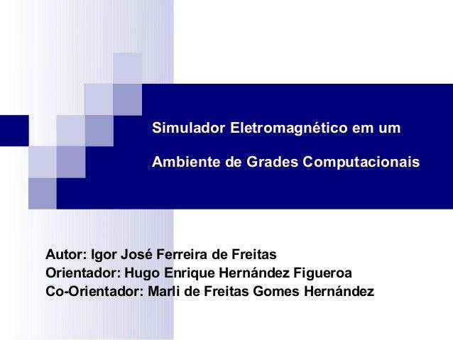 Simulador Eletromagnético em umAmbiente de Grades ComputacionaisAutor: Igor José Ferreira de FreitasOrientador: Hugo Enriq...
