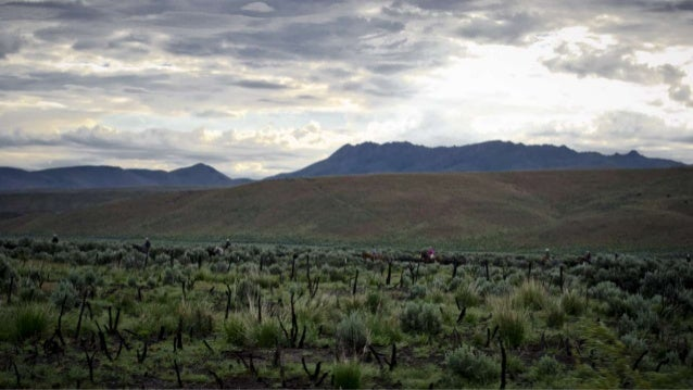"Jon Griggs, ""Maggie Creek Ranch"" Slide 3"