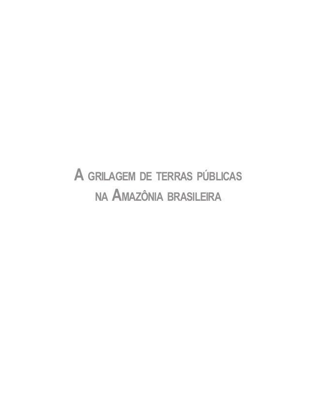 A GRILAGEM DE TERRAS PÚBLICAS NA AMAZÔNIA BRASILEIRA