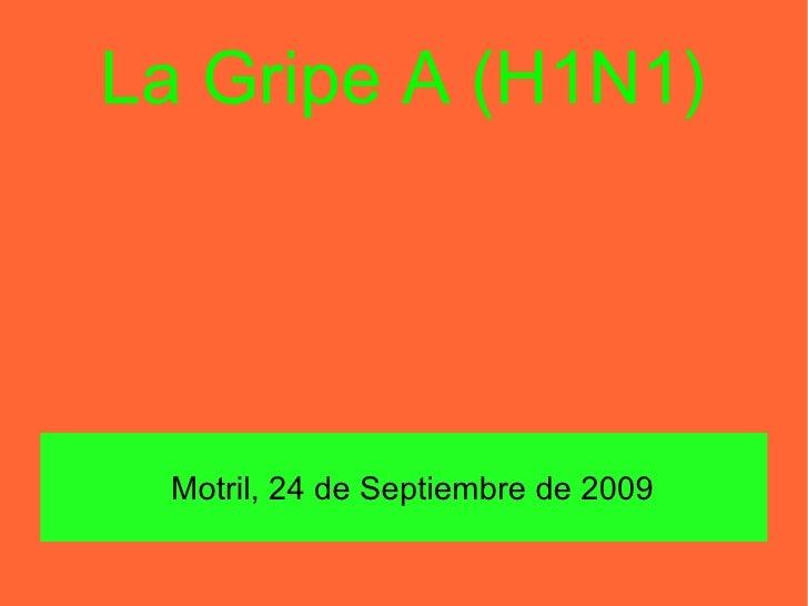La Gripe A (H1N1) <ul><ul><li>Motril , 24 de Septiembre de 2009 </li></ul></ul>
