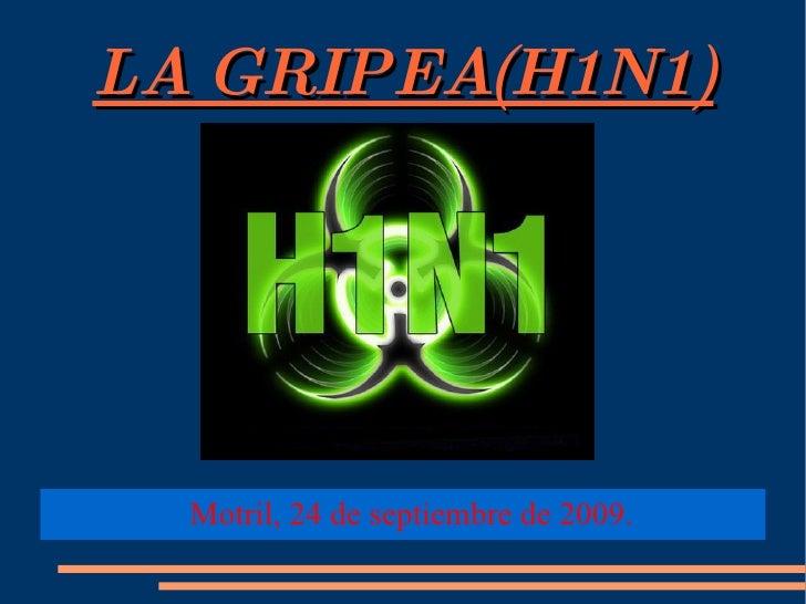 LA GRIPEA(H1N1) <ul><ul><li>Motril, 24 de septiembre de 2009. </li></ul></ul>