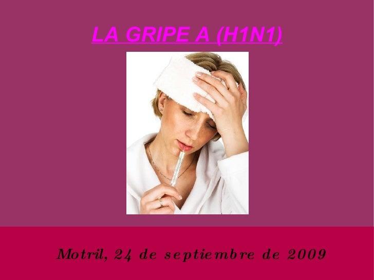 LA GRIPE A (H1N1) <ul><ul><li>Motril, 24 de septiembre de 2009 </li></ul></ul>
