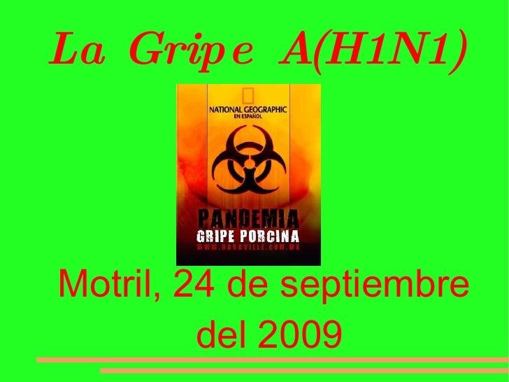 La Gripe A(H1N1) <ul><ul><li>Motril, 24 de septiembre del 2009 </li></ul></ul>