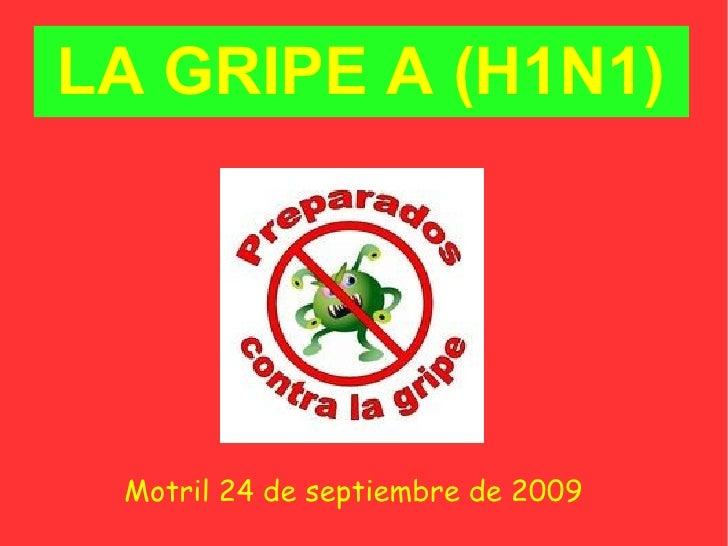 LA GRIPE A (H1N1) <ul><ul><li>Motril 24 de septiembre de 2009 </li></ul></ul>