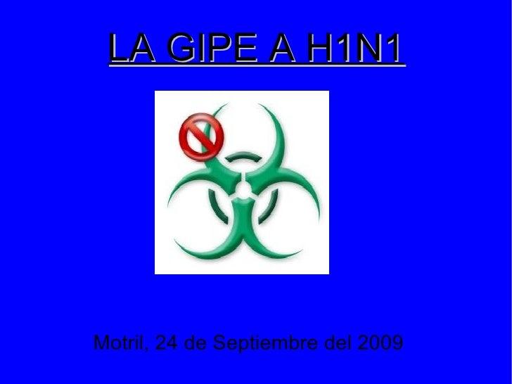 LA GIPE A H1N1 <ul><ul><li>Motril, 24 de Septiembre del 2009 </li></ul></ul>
