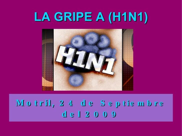 LA GRIPE A (H1N1) Motril, 24 de  Septiembre  del 2009