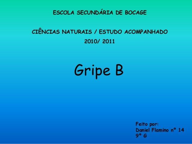 Gripe B Feito por: Daniel Flamino nº 14 9º G ESCOLA SECUNDÁRIA DE BOCAGE CIÊNCIAS NATURAIS / ESTUDO ACOMPANHADO 2010/ 2011