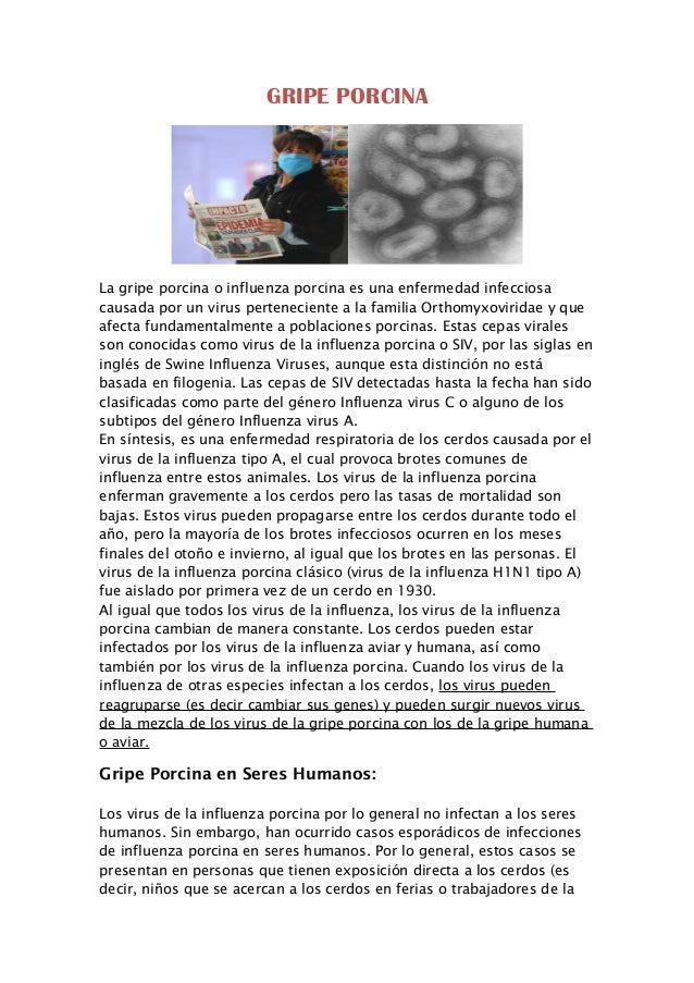 GRIPE PORCINA La gripe porcina o influenza porcina es una enfermedad infecciosa causada por un virus perteneciente a la fa...