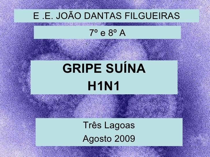 E .E. JOÃO DANTAS FILGUEIRAS GRIPE SUÍNA H1N1 Três Lagoas Agosto 2009 7º e 8º A