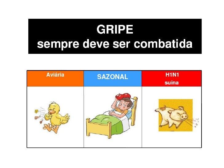 Gripe Suína_H1n1_Orientaçôes