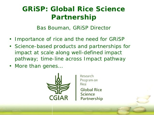 GRiSP: Global Rice Science           Partnership          Bas Bouman, GRiSP Director• Importance of rice and the need for ...