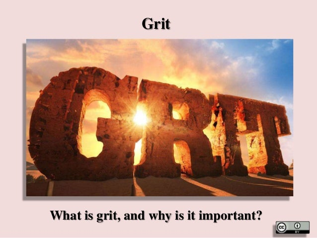 Grit What is grit, and why is it important?